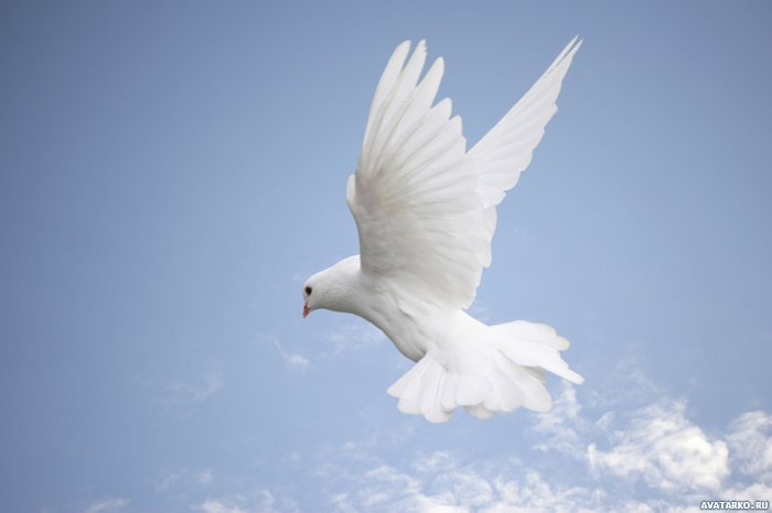 Хула на Святого Духа - непростительный грех